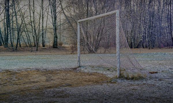 Snow Goal