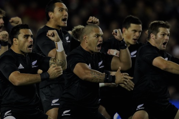 all blacks header
